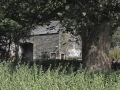Listed-Barn-fr-Field-